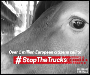 stop the trucks announcement of 1 million signatures visual (1)